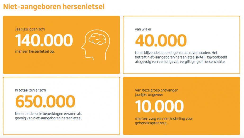 Jaarlijks lopen zo'n 140.000 mensen hersenletsel op. In totaal zijn er zo'n 650.000 Nederlanders die beperkingen ervaren als gevolg van niet-aangeboren hersenletsel. Van wie er 40.000 forse blijvende beperkingen eraan overhouden. Het betreft niet-aangeboren herstelletsel (NAH)m bijvoorbeeld als gevolg van een ongeval, vergiftiging of hersenziekte.